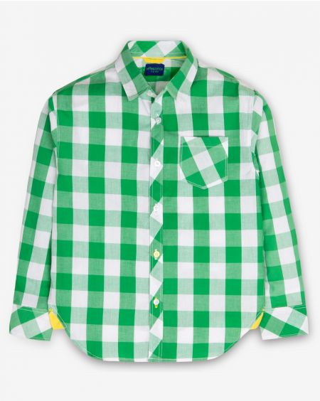 Green & White Check Shirt
